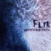 Product Image: Flik - Wonderdisc