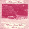 Product Image: Water Into Wine Band - Harvest Time (reissue)
