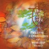 Product Image: Celtic Expressions Of Worship - Celtic Expressions Of Worship Vol 2: The King Of Love