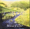 Product Image: Celtic - Streams Of Praise