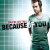 Product Image: David Ostby - Because Of You