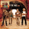 Product Image: By The Tree - 2 For 1: World On Fire and Root