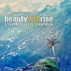 Product Image: Steven Curtis Chapman - Beauty Will Rise