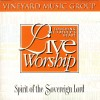 Product Image: Vineyard Music, Cindy Reithmeier, David Ruis - Touching The Father's Heart 21: Spirit Of The Sovereign Lord