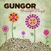 Product Image: Gungor  - Beautiful Things