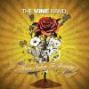 The Vine Band - From Ashes To Beauty