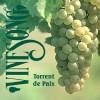 Product Image: Vinesong - Torrent de Paix