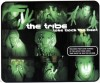 The Tribe - Take Back The Beat